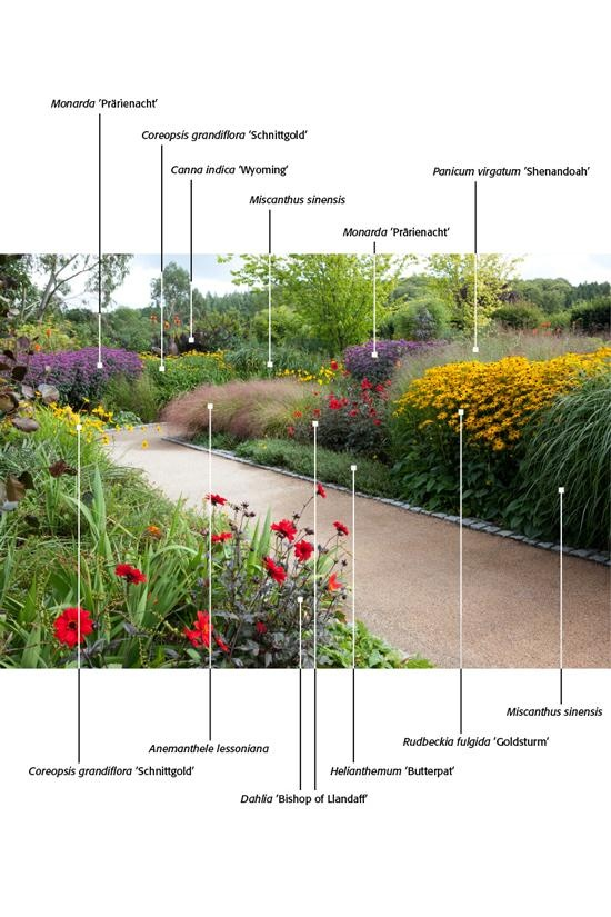 17 best images about stauden mix on pinterest for Perennial plant combination ideas