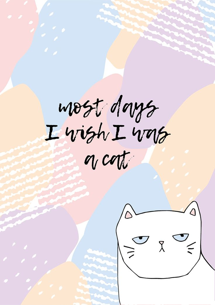 I wish I was a cat - free printable wall art