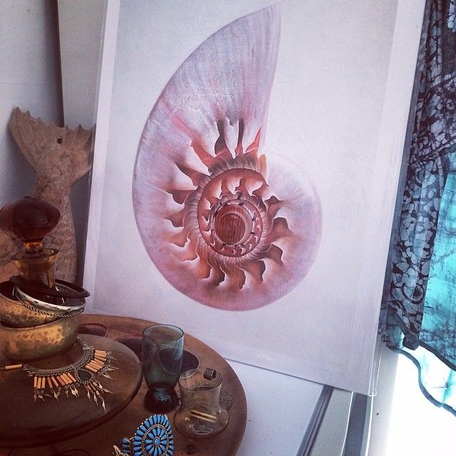 'Spiral Shell' limited edition print, available on website: http://www.terezkabeck.com.au/limited-edition-prints