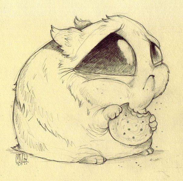 Смешные животные картинки карандашом