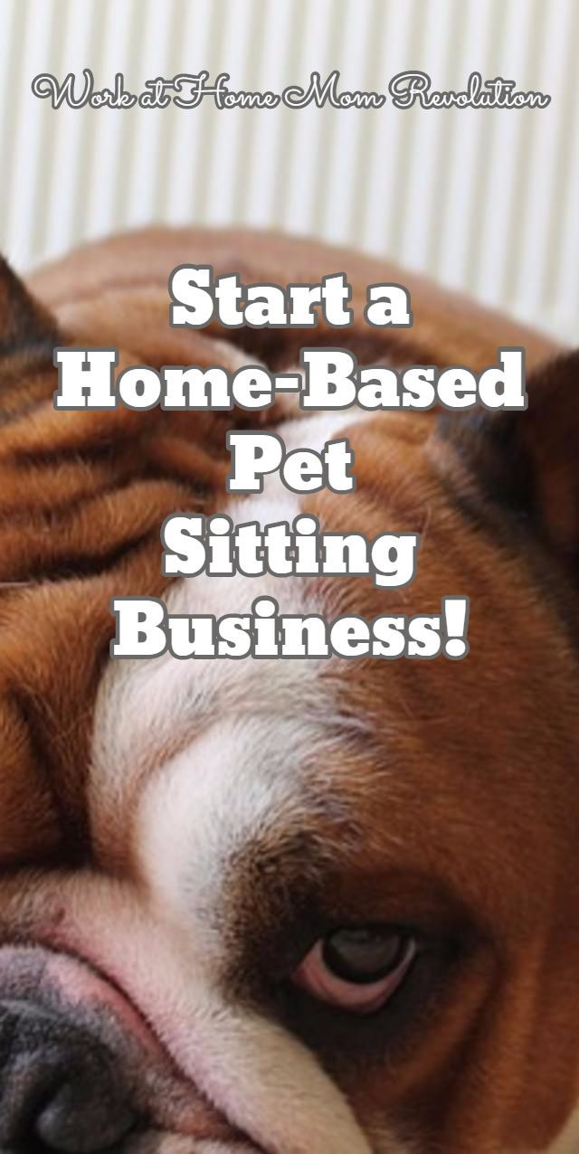 Start a Home-Based Pet  Sitting Business! / Work at Home Mom Revolution