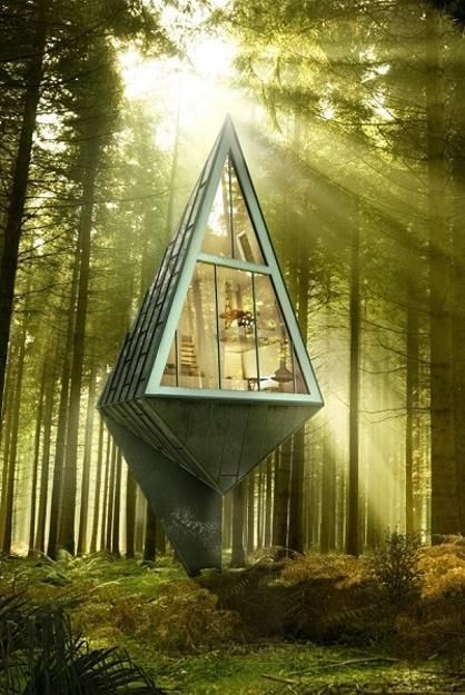 Tree inspired pyramid-shaped modern house design Architecture student Konrad Wojcik has developed a project called Primieval Symbiosis and envisioned a Single Pole House