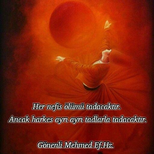 Gönenli Mehmed Ef. Hz.