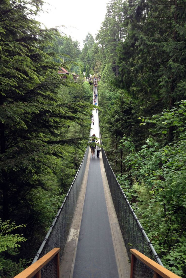 Capilano Suspension Bridge - Vancouver, Canada. ....
