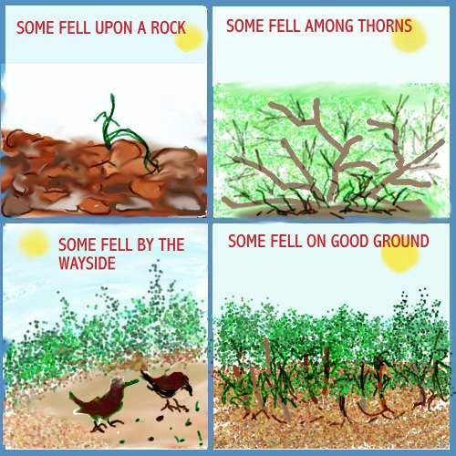 99 best images about Parable of Sower and the Seed on Pinterest ...