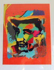 Tawhairiri - framed print