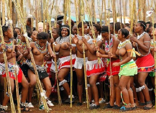 South African Festival: Inside Story of the Zulu Dance Festival