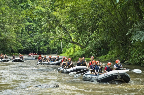 Rafting in BaliAsian Adventure, Southeast Asian, Favourite Places, South Pacific