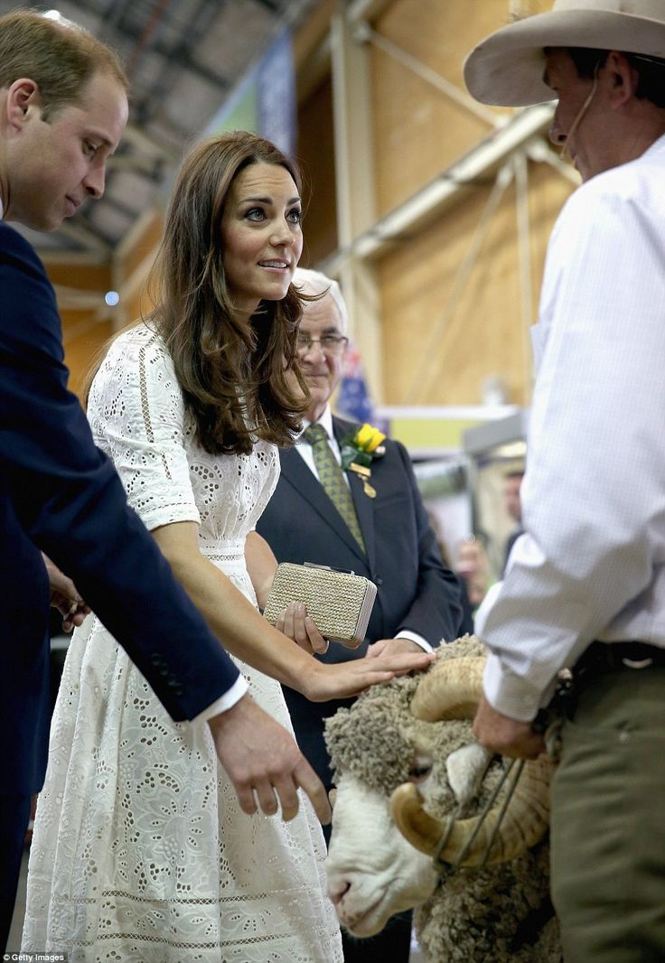 The Duchess continued to stroke the wooly animal as she chatted to Fred's owner Jim Murray, from Wellington