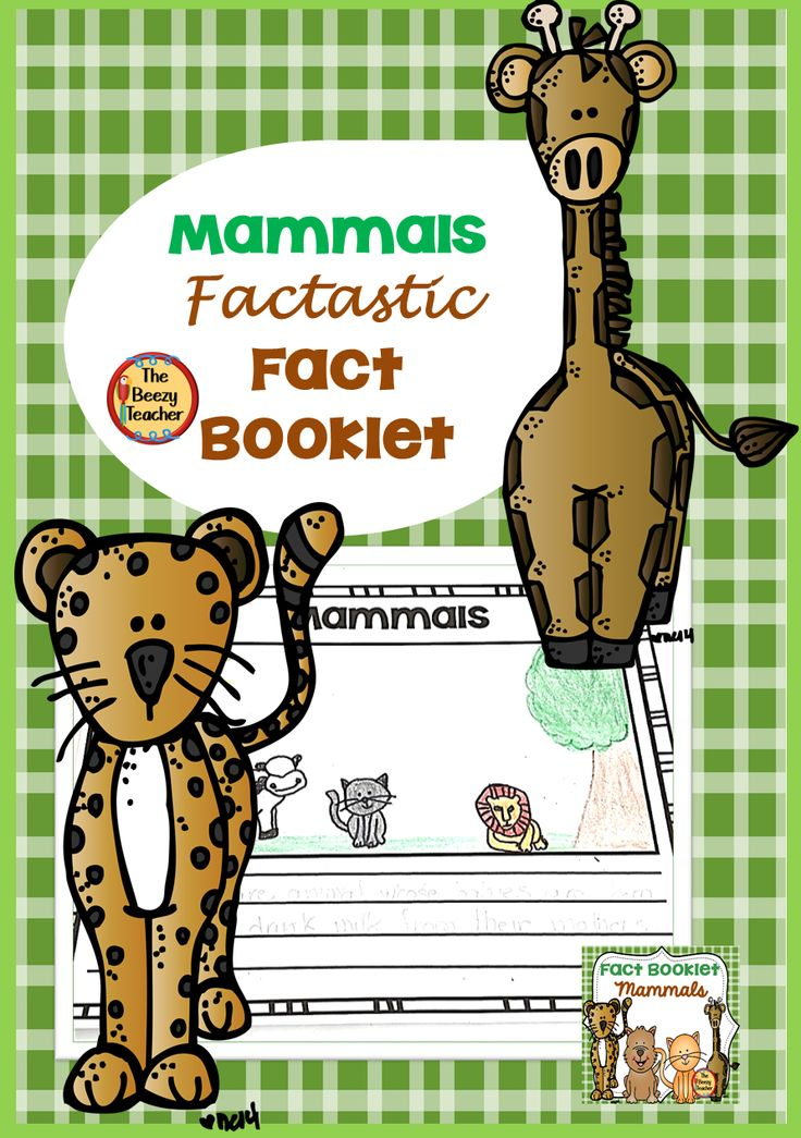 Mammals Fact Booklet in 2020 Mammals, Zoo animals, Facts