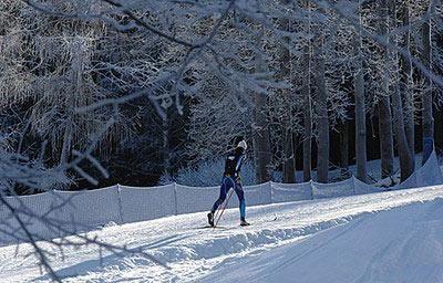 Piste da sci di fondo in Val di Fiemme: la marcialonga