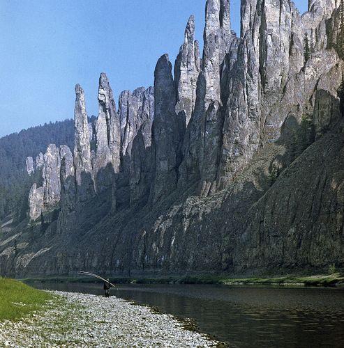 Каменный лес в Китае?  Нет, это другое место, внесенное в список Всемирного наследия ЮНЕСКО, - Ленские столбы. Уникальные скальные образования начали формироваться 540-560 миллионов лет назад, они сложены кембрийскими известняками. Лесистые столбы из красного песчаника величественно отражаются в спокойных водах Лены. Река – основной путь к столбам, обычно до них добираются на маленьком судне из Якутска. Хотя дорога из Европы к Ленским столбам занимает меньше времени, чем пут