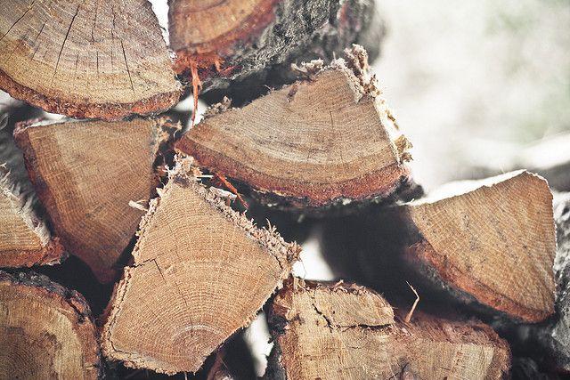 Firewood  (Hannah Queen, honey & jam)