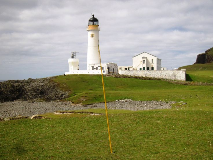 85 best The Flora of Fair Isle images on Pinterest | Fair isles ...