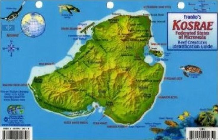 Kosrae Federated States Of Micronesia Reef Creatures - Micronesia interactive map