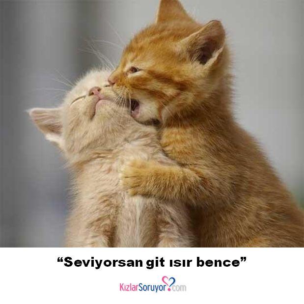 """""""Seviyorsan git ısır bence"""" http://www.kizlarsoruyor.com/"""