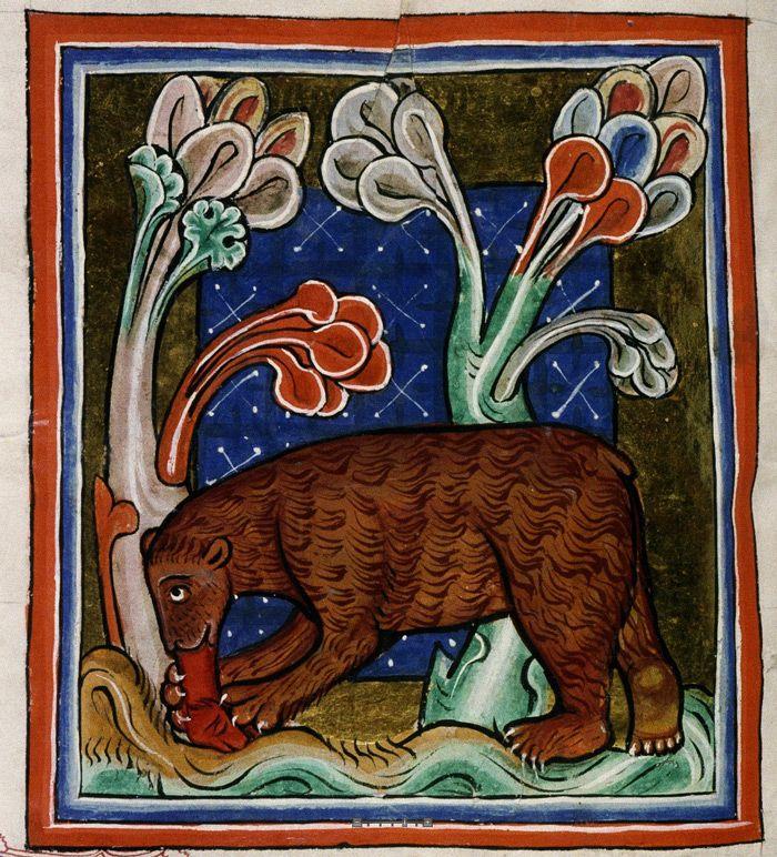 Bodleian Library, MS. Bodley 764, Folio 22v