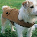 Knitting Pattern For Jack Russell Dog Coat : 20 free dog coat patterns Dogs clothes Pinterest