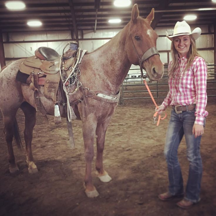 "6,406 Likes, 90 Comments - Amber Marshall (@amber_marshall_farm) on Instagram: ""Had a great weekend in Grande Prairie! Does this horse look familiar? His name is Doc and he is…"""