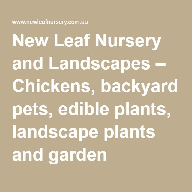 New Leaf Nursery and Landscapes – Chickens, backyard pets, edible plants, landscape plants and garden products