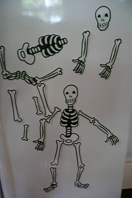 Pink and Green Mama: Preschool At Home: Fridge Skeleton and Learning About the Human Body