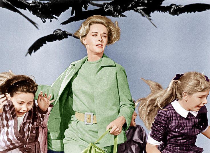 the-birds-tippi-hedren-center-1963-everett.jpg (900×657)