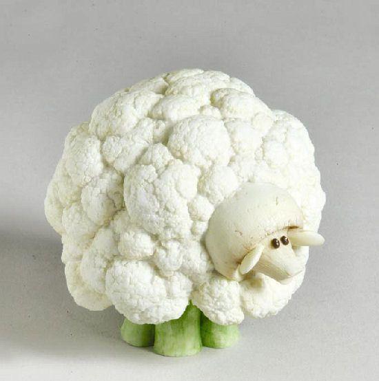 Home Grown Veggie Animal Figurine - Cauliflower Sheep