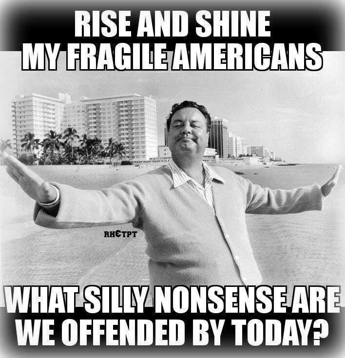 Liberal Democrats are offended by patriotism, morality, laws, God, Christians, white people, conservatives, Republicans, and anything that is good