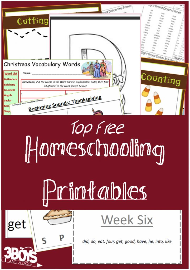 Check out the newest post (Top 13 Free Homeschooling Printables!) on 3 Boys and a Dog at http://3boysandadog.com/2014/02/top-13-free-homeschooling-printables/?Top+13+Free+Homeschooling+Printables%21