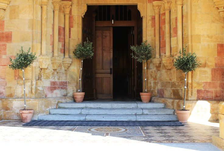 #church #entrance #olive #trees
