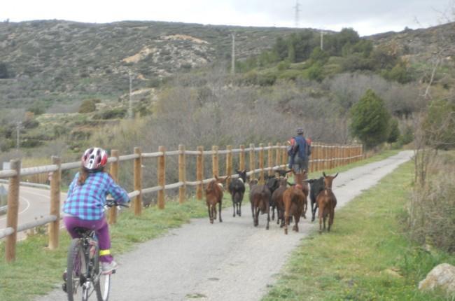 Los viajes a golpe de pedal por las vías verdes facilitan a los más pequeños el contacto con la naturaleza. Una oportunidad para aprender y divertirse... http://www.viajarenfamilia.net/viajes/la-via-verde-de-ojos-negros/