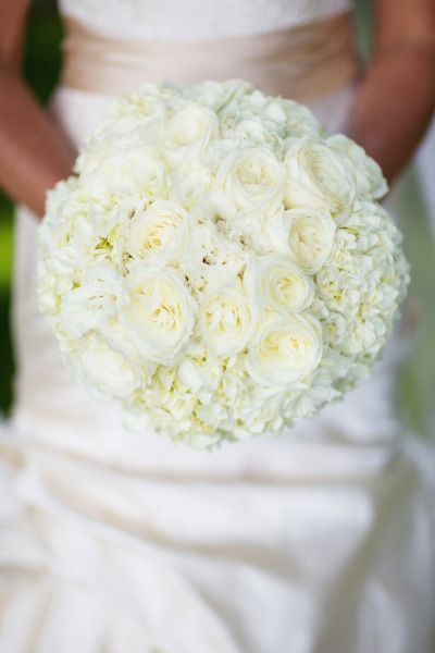 white bouquet of garden roses and hydrangeas Photography by Jonathan Young Photography / jyweddings.com, Floral Design by Art In Bloom / artinbloomfloral.com #Bouquet