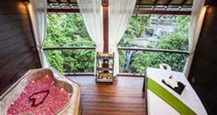 Bali Zoo Elephant Ride Expedition + 1 hour Revitalization Spa Package