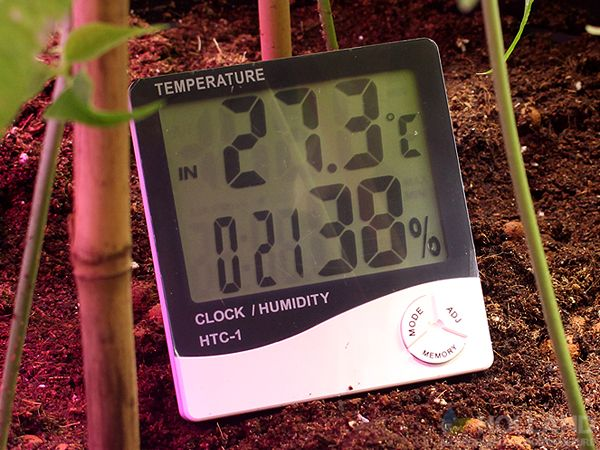 How To Prepare Your Indoor Grow Room For Winter   Holland Hydroponics   hydroponics.co.uk