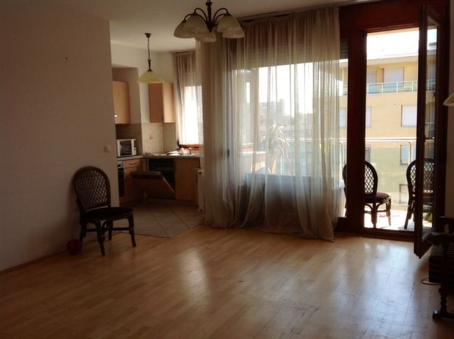 Living room + terrace + kitchen
