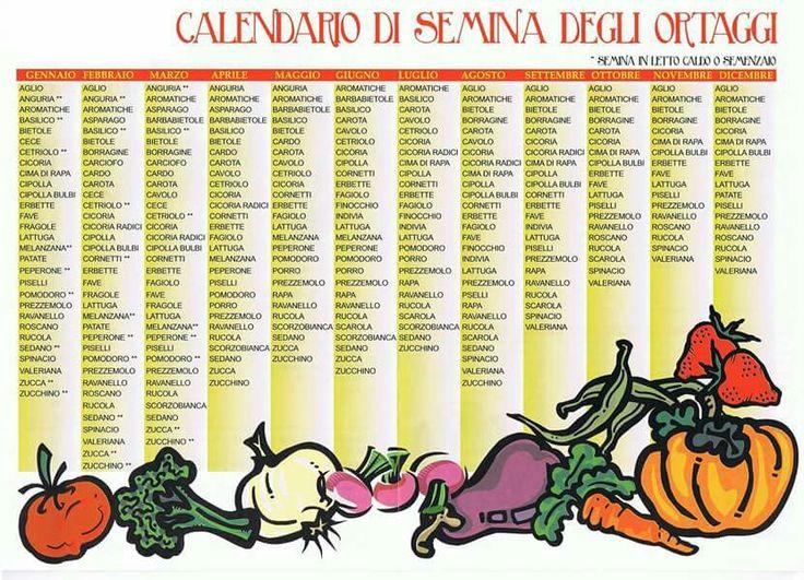 Calendario semina
