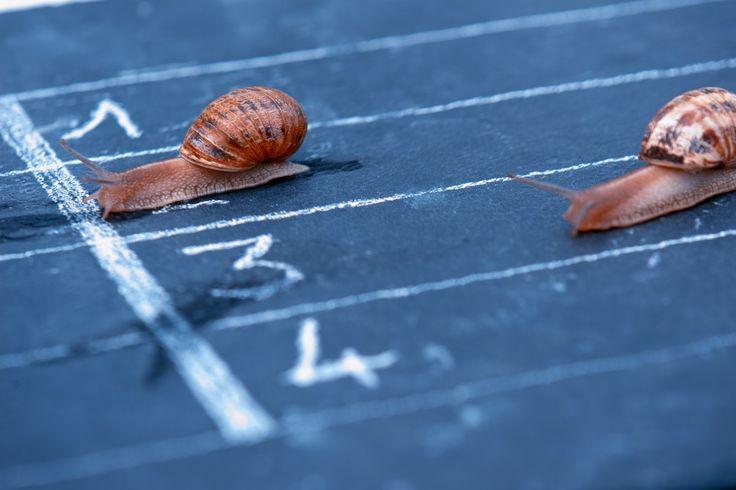 Motivasi: Kunci untuk meraih keberhasilan