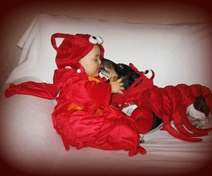 Here's an idea for this Halloween: matching costumes for the baby and the dog!