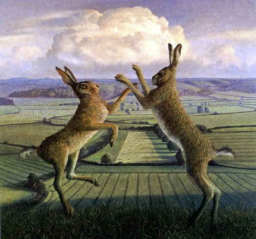 Boxing Hares – Brimsdown Hill by James Lynch. James lives with wife Kate on a hill overlooking the Somerset Levels and Moors. He is famous for his monumental animals set in visionary landscapes, but his recent work focusses on the Somerset and Dorset landscape.  Blank greeting card published by Towell & Scott. Distributed by Art Cove UK.