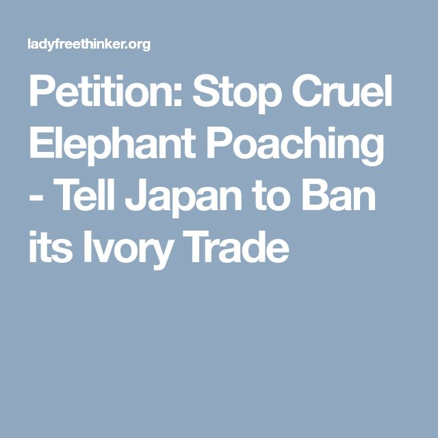 Petition: Stop Cruel Elephant Poaching - Tell Japan to Ban its Ivory Trade