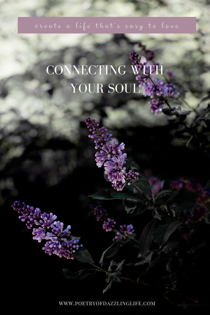 Connecting With Your Soul - POETRY OF DAZZLING LIFE - BLOG Would you like to develop a one of a kind of life? The life that`s thought through, would be based on things that`s meaningful to you and lived with ease…