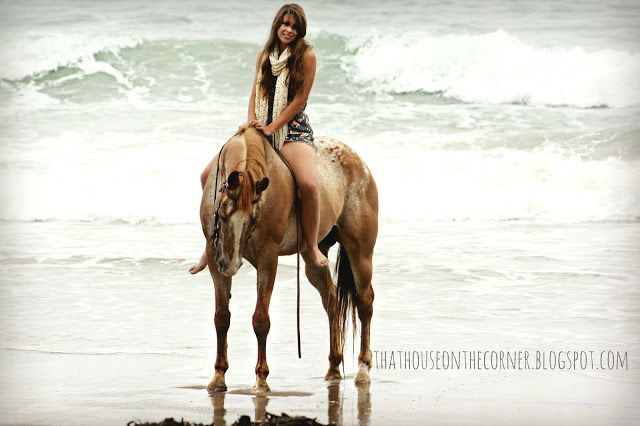 white horse beach senior singles South carolina is known as the palmetto state and seniorpeoplemeetcom is here to bring their senior singles farmer, horse and hound beach singles singles.