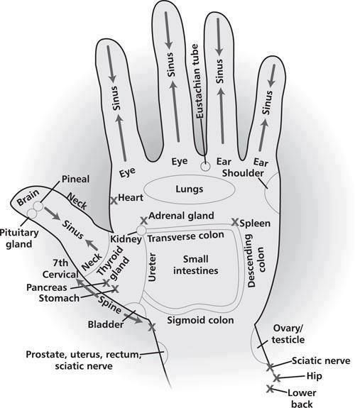 Apply your essential oils to your hand for relief just like you would your feet. Check out this picture to learn how.