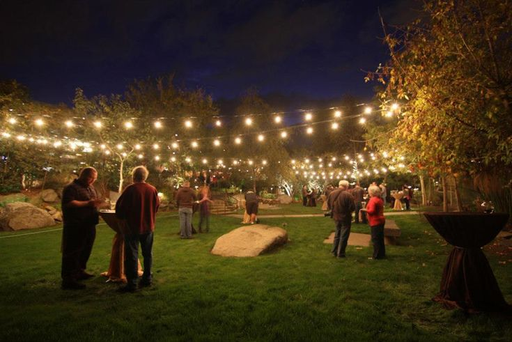 Lighting For Backyard Party : Graduation Party, Backyard Event, Backyard Party Lighting, Idea Lights