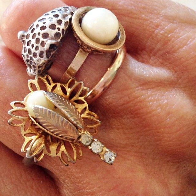 Rings (Sophie Fontanel)