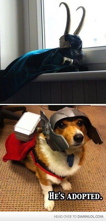 He's Adopted #Thor #moviestastegood