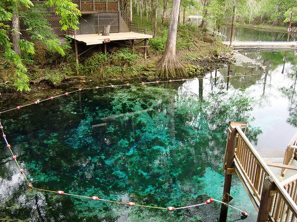 Fanning Springs State Park In North Florida
