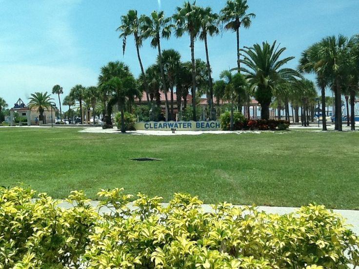 To miasto, które zachwyca przez cały rok. Położone na zachodnim wybrzeżu Florydy. Klimat jest tam ciepły i łagodny. Wakacje, słońce i ciągnące się kilometrami piaszczyste plaże, zapewnia wyśmienity wypoczynek i niesamowite wakacje. Plaża w Clearwater Beach przyciąga turystów , głownie dzięki lazurowemu wybrzeżu, woda jest tam krystalicznie czysta. Puszysty piasek to na pewno atut tego