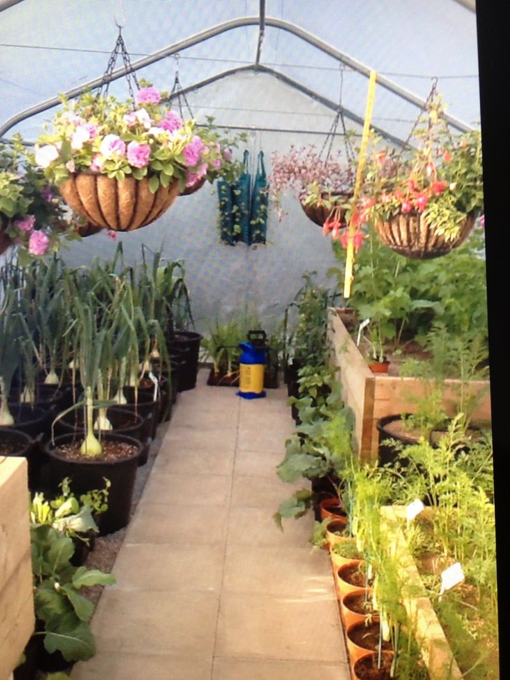 polytunnel layout - Google Search