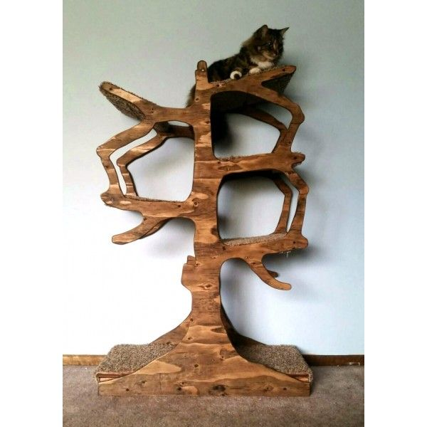 92 best images about Catios and Other Cat Play Structures on ...